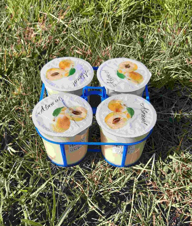 4 yaourts brassés à l'ABRICOT