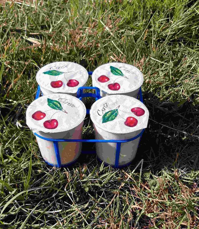 4 yaourts brassés à la CERISE au lait de chèvre