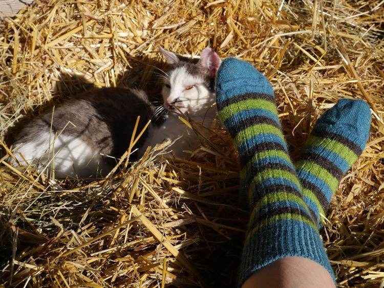 Chaussettes mohair taille 43/45 coloris assortis