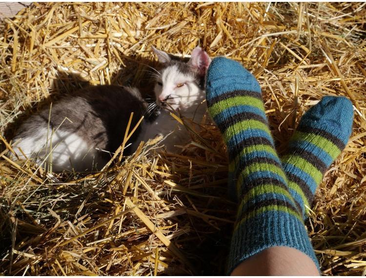 Chaussettes mohair taille 37/39 coloris assortis