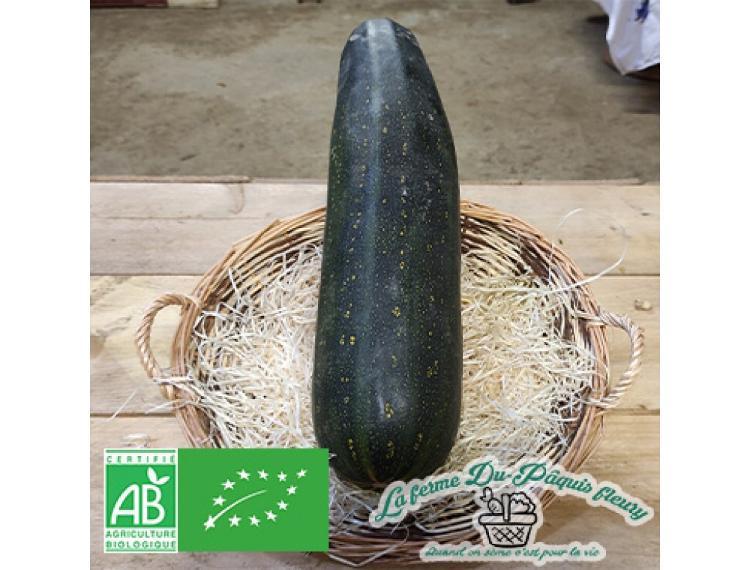 Courgette bio longue 1.5kg