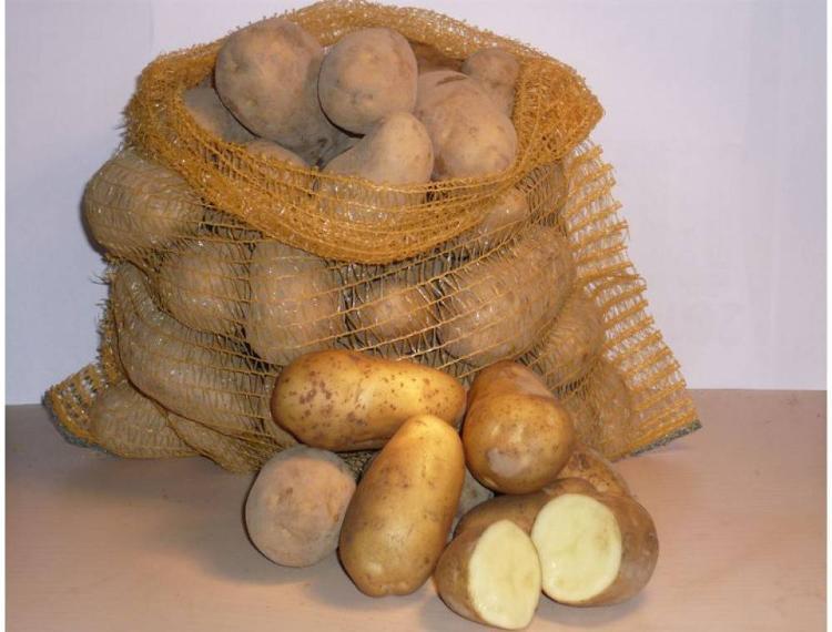 Pomme de terre ELODIE Frite Purée 10kg