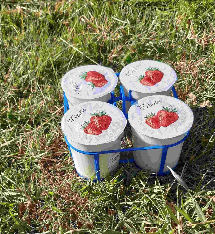 4 yaourts brassés à la FRAISE au lait de chèvre
