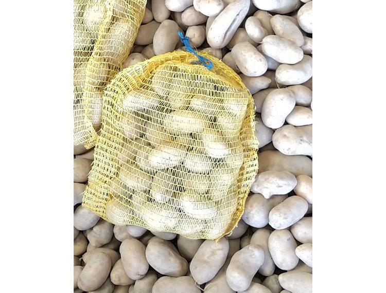 Pomme de terre BIO - BERNADETTE - Rissolée - Vapeur - 3kg