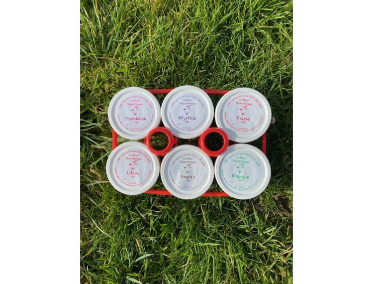 6 yaourts mixtes - Le Péras