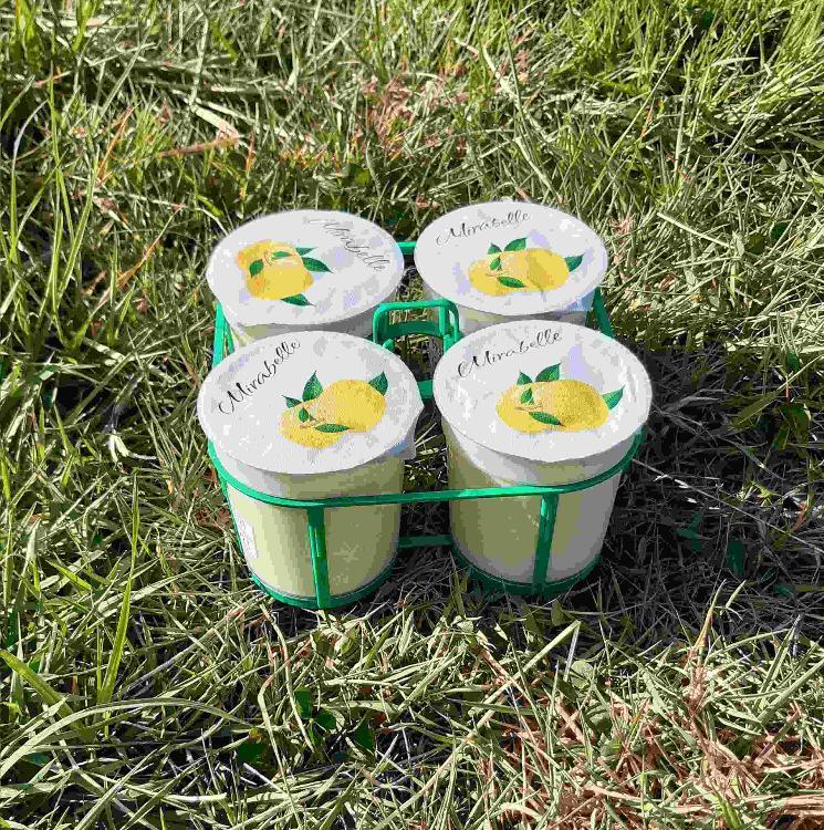 4 yaourts brassés à la MIRABELLE au lait de chèvre