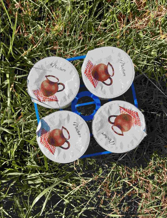 4 yaourts brassés NATURE au lait de chèvre