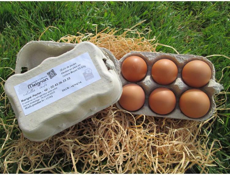 12 oeufs de poules en plein air Moyens 53-63g- Elevage MEIGNAN
