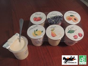 6 yaourts aux fruits