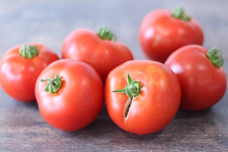 Tomates rondes rouges