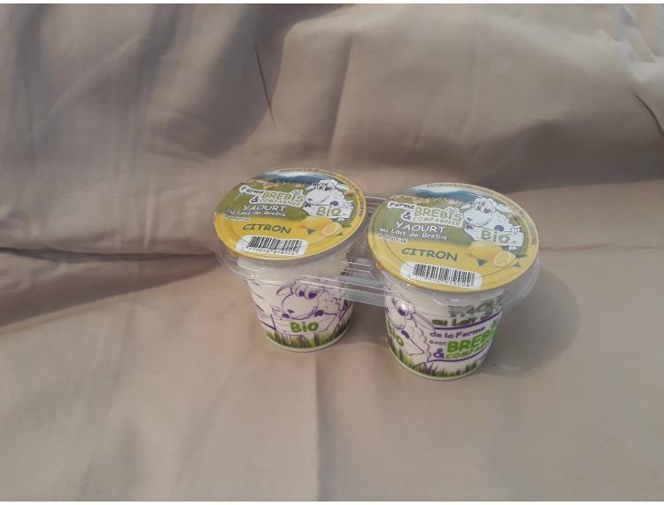 6 Yaourts bio CITRON au lait pasteurisé de brebis