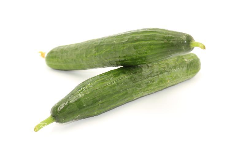 concombre long les 2
