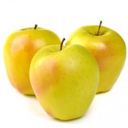 Pomme Golden des Alpes