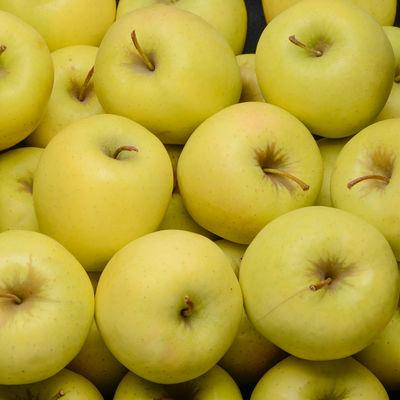 Pomme Golden  les 2 Kilos