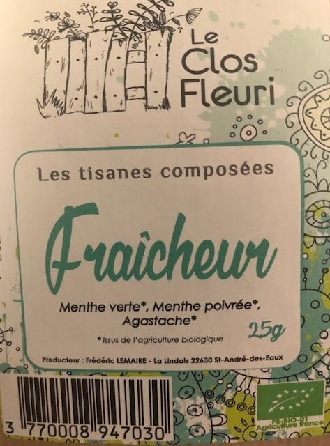 Tisane Fraicheur Bio (menthe marocaine, menthe poivrée, agastache)