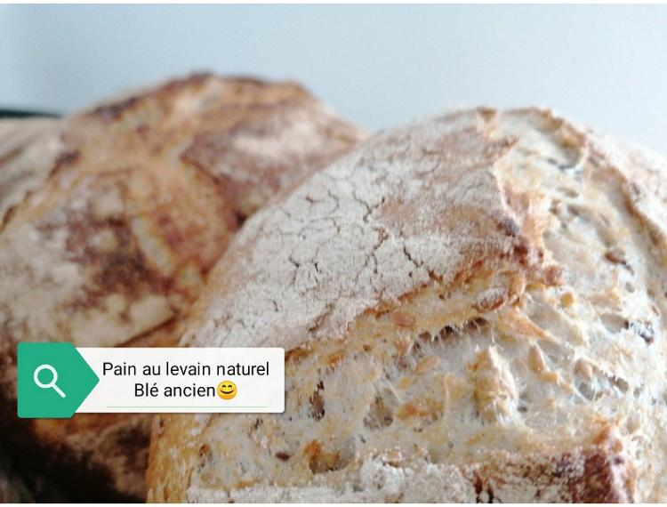 Pain de blé ancien 500gr