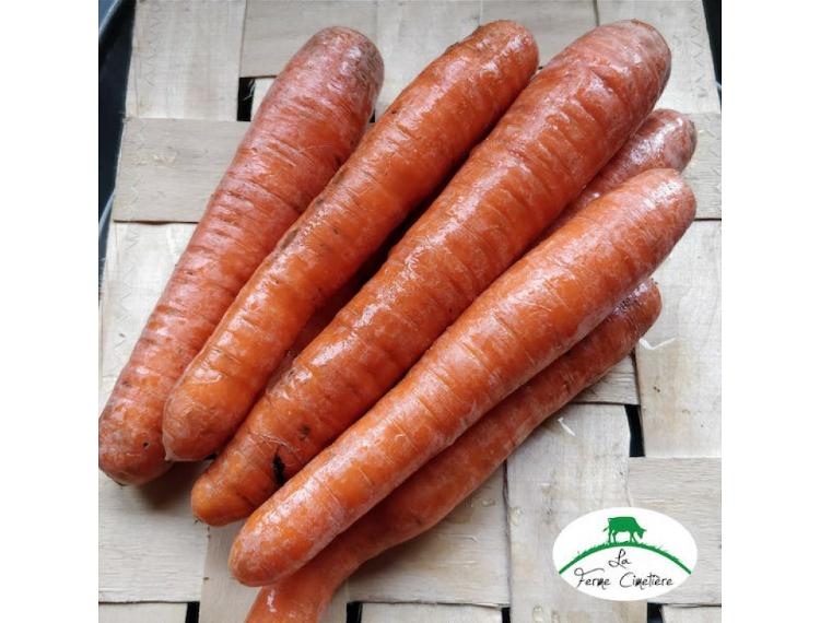 carottes type nantaise lavées 1 kg