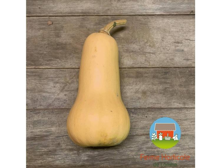 Courge Butternut - 1kg