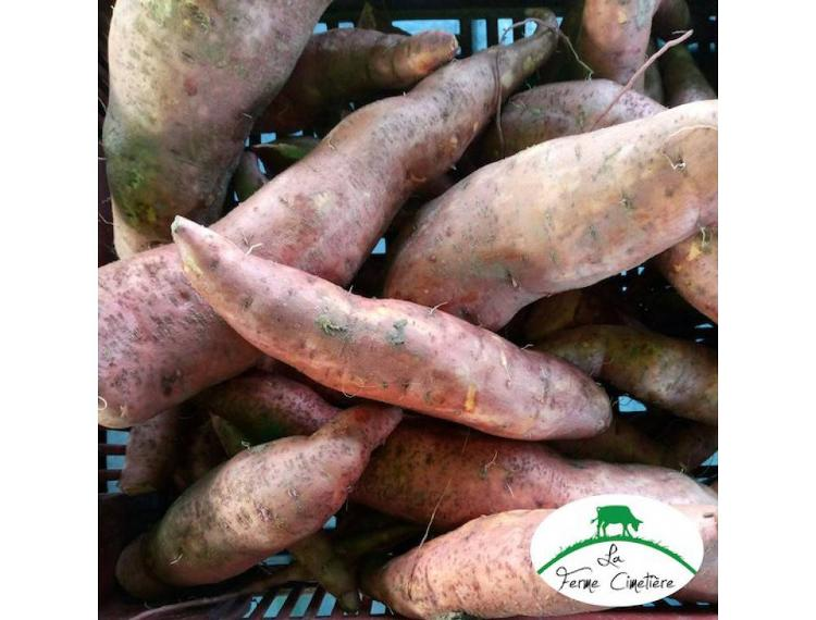 Patate douce 1 kg