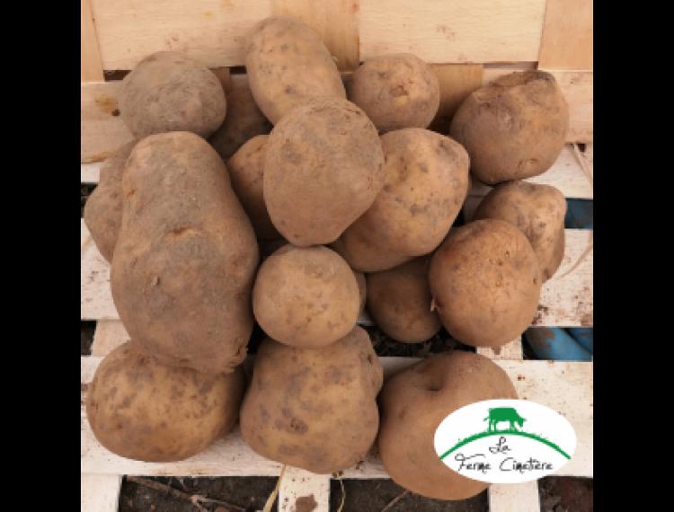 Pommes de terre bintje lavées 2.5kg