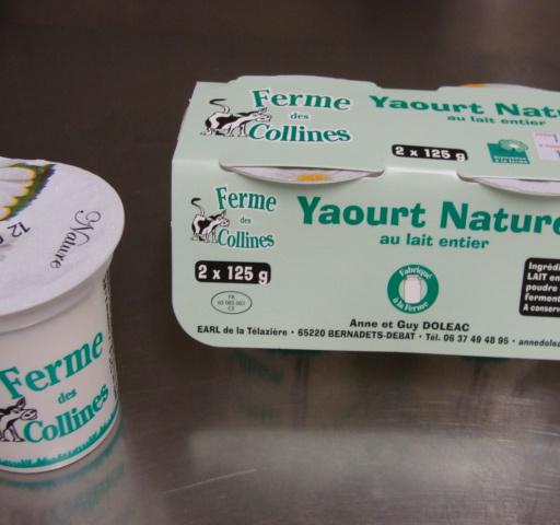 Yaourt nature 2 pots de 125g