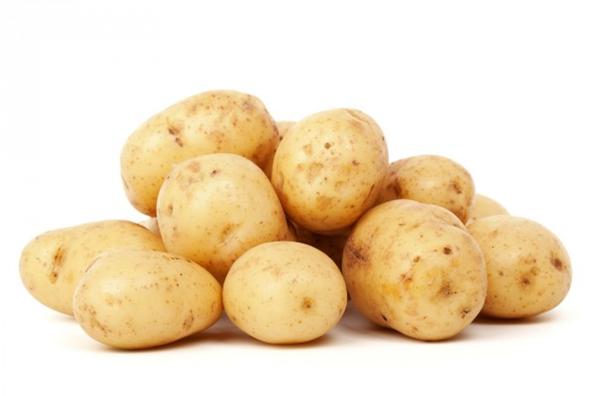 Pommes de terre de consommation AGATA