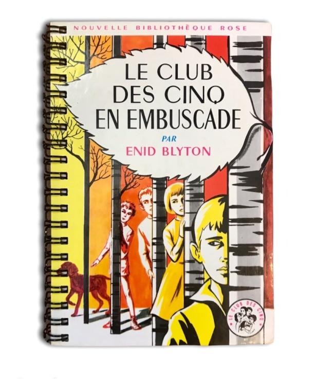 Carnet  Bibliothèque rose LE CLUB DES 5 EN EMBUSCADE